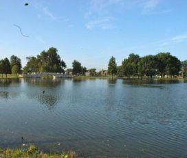 Fairground Park